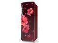 Whirlpool 200L 4S Single Door Direct CoolRefrigerator Wine Hibiscus 215 IMPRO PRM4SINV